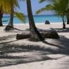 Playa Saona, Dominikánská republika