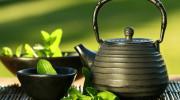 Nákupy - čaj