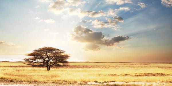 Keňa, Afrika