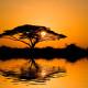 SAIWA SWAMP – národní park
