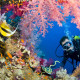 Potápění a šnorchlování v Keni